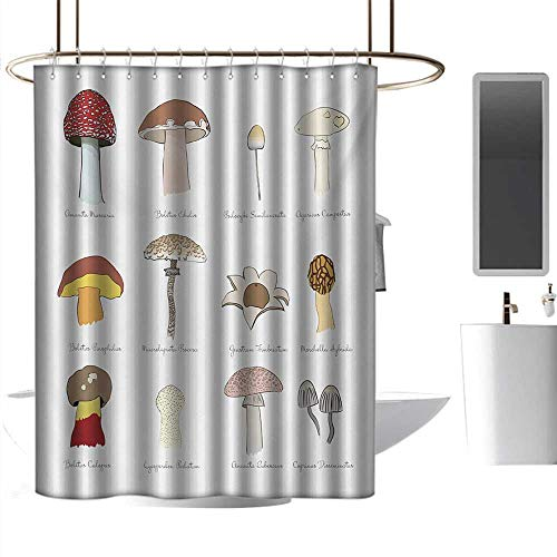 Amazon.com: coolteey Shower Curtains Goldfish Mushroom,Colorful Fungi Pattern Blusher Boletus Sketch Style Plants Autumn Illustration,Multicolor,W72 x L84 ...