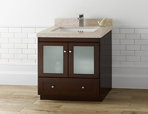 RONBOW Essentials Shaker 30 Inch Bathroom Vanity Cabinet Base in Dark Cherry Finish, with Soft Close Frosted Glass Doors and Full Extension Drawers 080830-1-H01