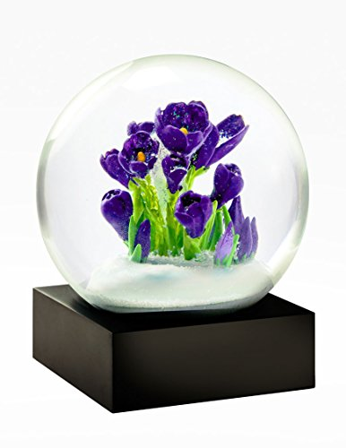 Crocus Flowers Snow Globe by CoolSnowGlobes
