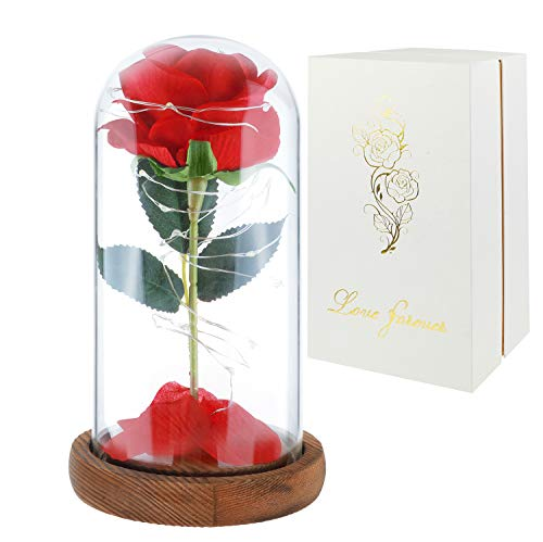Childom Mom Gift,Beauty and The Beast Rose Kit,