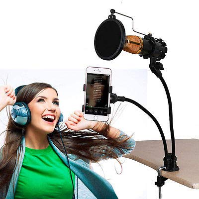 FidgetGear 2 In 1 Microphone Mic & Phone Stand Mount Clip Holder For Studio Sound Recording from FidgetGear