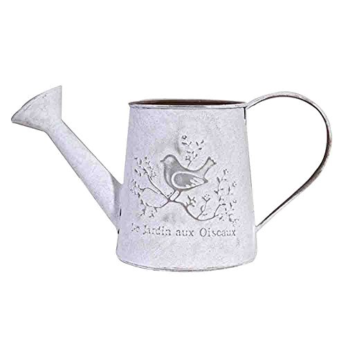 Watering Honey Elegant French Style Country Primitive Pitcher Flower Vase Watering Can Planters for Wedding Home Bar Decoration (Watering Pitcher)
