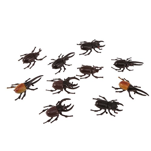 MonkeyJack 10pcs Vivid Plastic Animal Small Figure Toy Fake Insect Bug Beetles Model