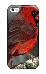 Nicholas D. Meriwether's Shop Premium Iphone 5/5s Case - Protective Skin - High Quality For Bird 2126175K53336473