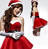 サンタクロース 衣装 コスチューム レディース フリーサイズ