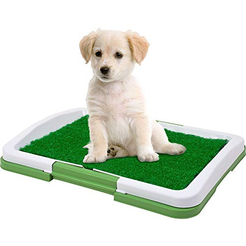 (Pet Potty Trainer Artificial Grass Mat with Mesh Collection Tray for Pet Dog Cat Portable Potty Trainer for Indoor and Outdoor Restroom Patch)