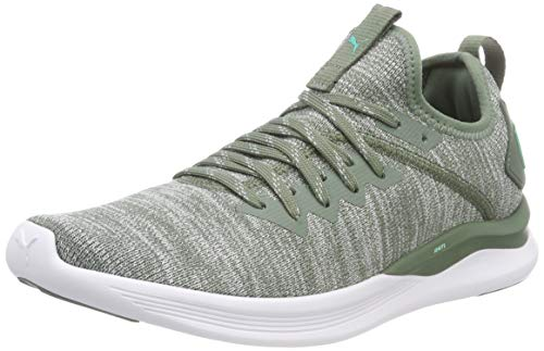 laurel Flash Puma Zapatillas Wn's Mujer quarry Green Running Evoknit 10 Ignite biscay Wreath Gris De Para wwqnSvxg5r
