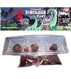Dinosaur Plant Trio