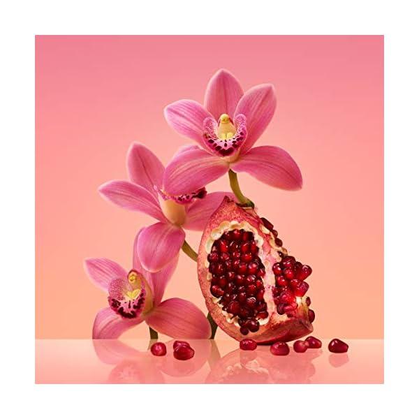Best Calvin Klein Euphoria EDP for Women Perfume Online India 2020