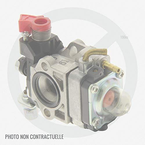 Stiga 1188018270 - Carburador desbrozadora: Amazon.es: Jardín