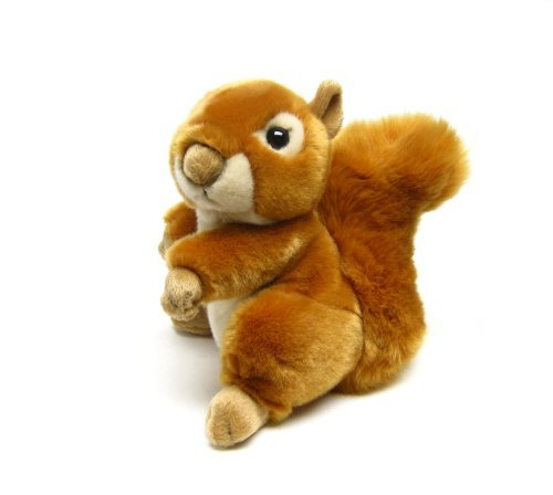 Squirrel with Beans Large 8 by Leosco by Leosco