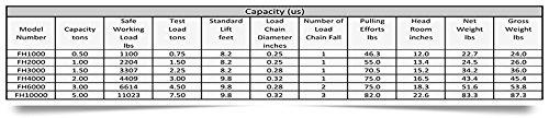 Ross 5 Ton Hand Chain Hoist with 10` Lift 88 lbs