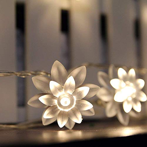 ER CHEN Battery Operated Indoor and Outdoor 60 LED Lotus Flower Fairy Lights on 22ft PVC String with Timer,for Chrismas, Party, Wedding, Patio, Garden Decor(Warm White) (Lights Bedroom For String Flower)