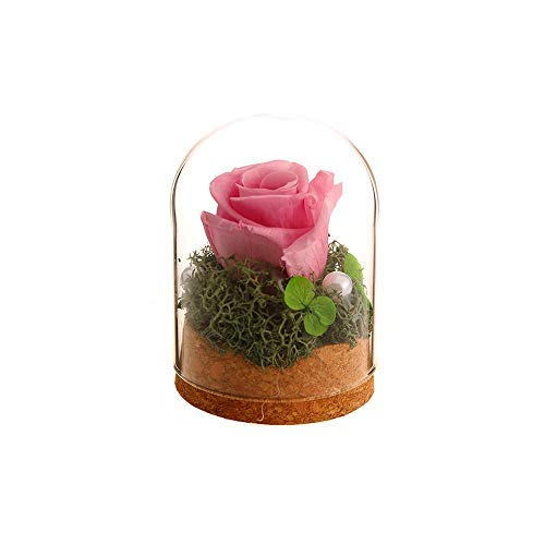 VINTAGE EMBROIDERY V.E. Preserved Rose Never Withered Roses Flower in Glass Dome, Gift for Valentine's Day Anniversary Birthday (Pink)... (Flowers For Valentines Day Other Than Roses)