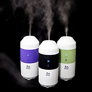 Arospa Electric Car/Indoor Diffuser/Humidifier width=