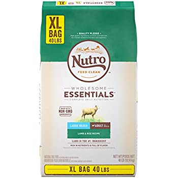 Amazon.com: NUTRO WHOLESOME ESSENTIALS Natural Puppy Large