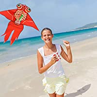 HAO CHEN Large Goldfish Kite for Kids and Adults Easy Fly Kite for Outdoor Game,Activities,Beach Trip Great Gift to Kids Childhood Precious Memories