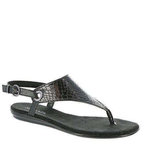 f0f0bd9f10f Aerosoles Women s Conchlusion Gladiator Sandal