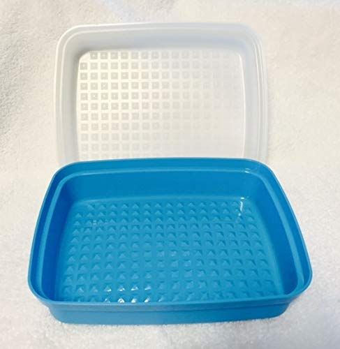 Tupperware Meat Marinade Container