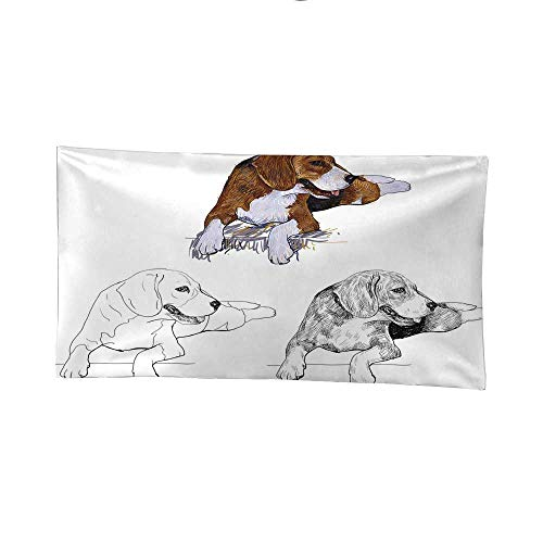 agle Wall Tapestries for Bedroom 91W x 60L Inch ()
