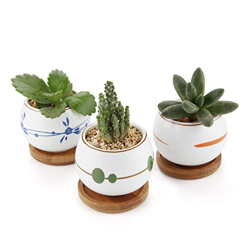 (T4U Ceramic Succulent Pots 2.75'' - Set of 3, Colorful Small Clay Pots Cactus Planters with Tray Decor)