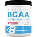 BodyBuilding.Com Signature BCAA Powder | Essential Amino Acids | Nutrition Supplement | Promote Muscle Growth and Recovery | 30 Servings, Watermelon Lime