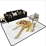 Indoor Floor mat,Pet Dog Laying Down with Toy Friendly Domestic Puppy Playful Companion 6'6''x10',Can be Used for Floor Decoration