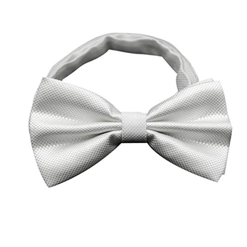 Gifts For Men ! Charberry Mens Bow Tie Butterfly Cravat bowtie Wedding commercial bow ties Cravats Accessories (White)
