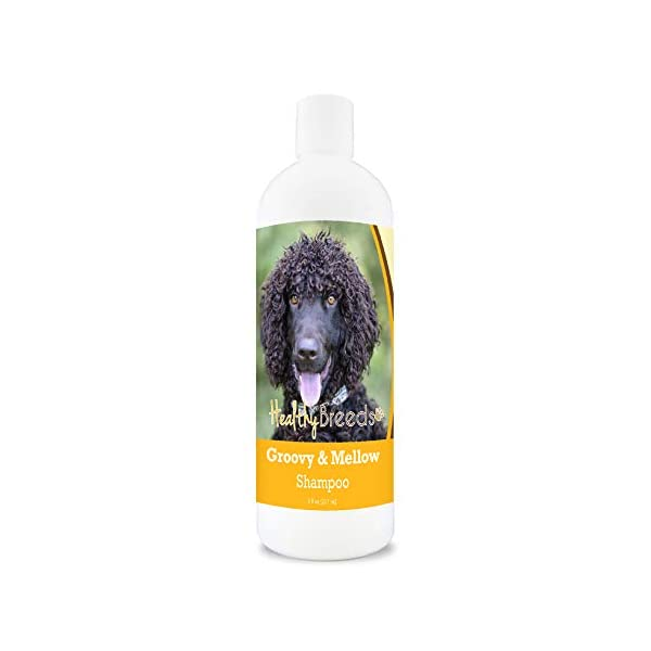 Healthy Breeds Calming Shampoo Lemongrass Extract creates calming effect while soothing to skin and repelling insects 1