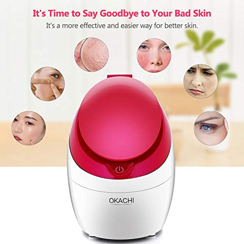 Facial Steamer Nano Ionic Hot Steam For Face Personal