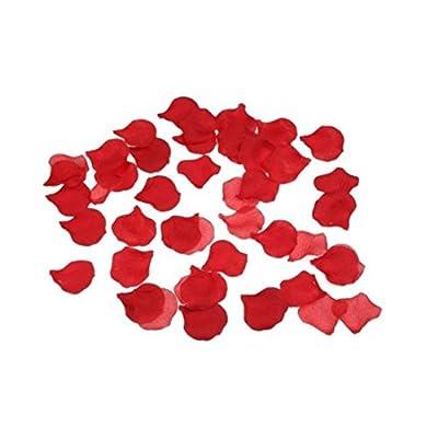 1000 Red Large Premium Silk Rose Petals Christmas, Wedding Flowers, Confetti by Flomans-Hochzeitsshop