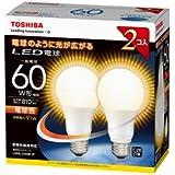 東芝 LED電球 一般電球形 9.1W(電球色相当)【2個セット】TOSHIBA E-CORE(イー・コア) LDA9L-G/60W-2P