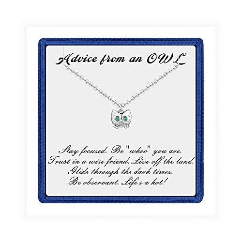 PAERAPAK Owl Pendant Necklace for Birthday Gifts - Silver Plated Cubic Zirconia Owl Charm Necklace Inspirational Necklace with Message Birthday Gifts for Best Friends Girlfriend Sister