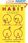 The Power of Habit: Why We Do What We...