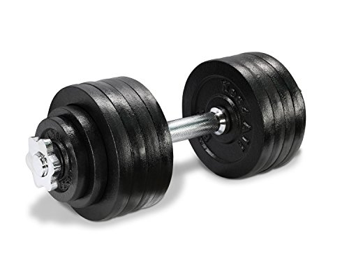 Lion Roar Fitness InfiDeals Adjustable Cast Iron Dumbbells with Handles, 52.5 lbs - Black