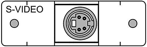 FSR IPS-V311S-LB-WHT Video Connector Insert (Labeled) (S-video Bulkhead)