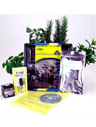 Amazon.com : Indoor Herbal Tea Garden Kit - Grow Herb Tea Herbs ...