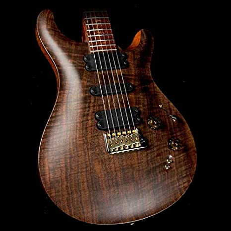 Paul Reed Smith privado Stock McCarty 509 guitarra eléctrica Figured nogal y Cocobolo cuello: Amazon.es: Instrumentos musicales