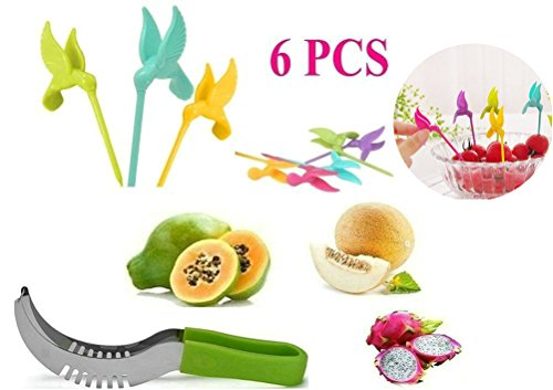 Creative Bird Carving (Cocobuy Stainless Steel Watermelon Melon Cutter Slicer with 6 Pcs Cute Creative Bird Fruit Forks Skewers)