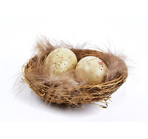 0 Bird Nest with Eggs, 1-1/2-Inch ()