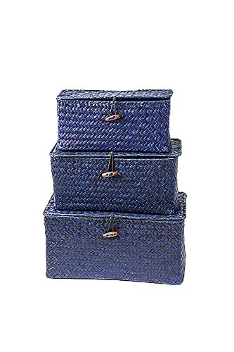 Oohlong Market Set of Three Hand-Woven Indigo Narrow Rattan and Wire Boxes (Set Dresser Rattan)
