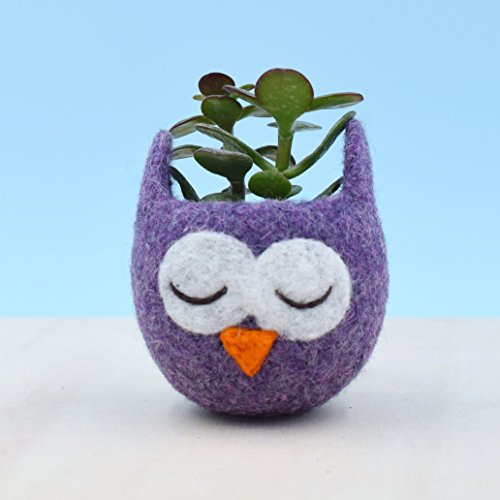 Owl Lover Succulent Planter Mini Birthday Gift Cactus Vase Plant