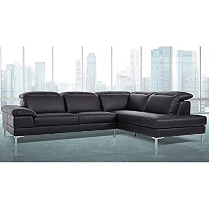 Amazon.com: BSD National Supplies Gentiana Contemporary ...