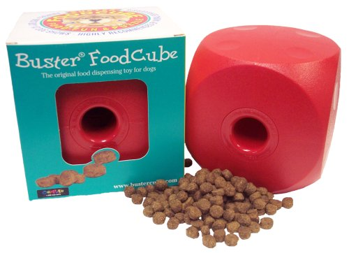 Buster Food Cube Large Size (Colors May Vary), My Pet Supplies