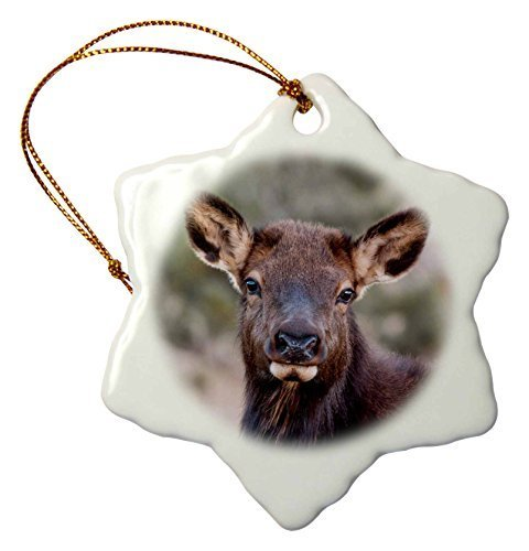 Funny Christmas Snowflake Ornaments Usa Colorado Estes Park Rocky Mountain Np Cow Elk Or Wapiti Holiday Xmas Tree Hanging Ornaments Decoration Gifts
