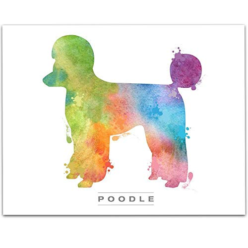 Watercolor Poodle - 11x14 Unframed Art Print - Great Gift for Dog Lovers, Also Makes a Great Gift Under $15