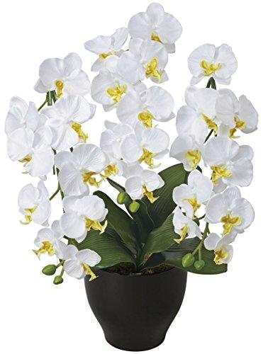 光触媒 造花 光の楽園 胡蝶蘭セリースW 20A100 B00XHQI1K0  ホワイト1