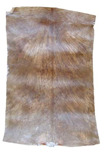 West African Goat Skin - Thick Shaved from Africa Heartwood Project ()