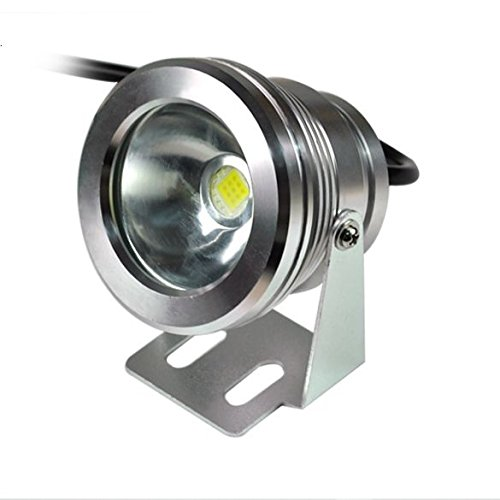 Brightest 12 Volt Flood Light