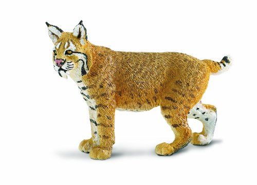 Safari Ltd  Wild Safari North American Wildlife Bobcat (Animals Bobcat)